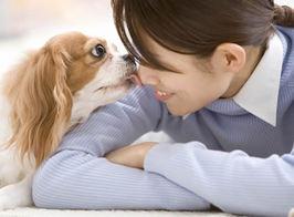 泣いてたら犬が頬を舐めてくれたけど、なぐさめてくれたのかな??