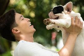 犬が抱っこを嫌がるようになった・・・のはどうして??