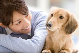 犬はどうやって飼い主や家族である人間を識別しているの?